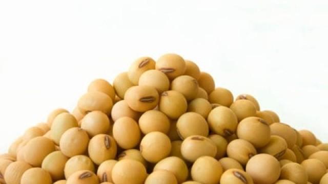 Σόγια – ένα γενετικά τροποποιημένο τρόφιμο!