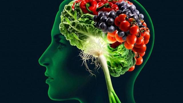 4 τροφές που ενισχύουν τη μνήμη.